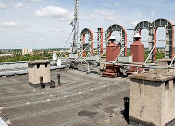 Opinia ornitologiczna dla budynku przeznaczonego do termomodernizacji w sezonie lęgowym.